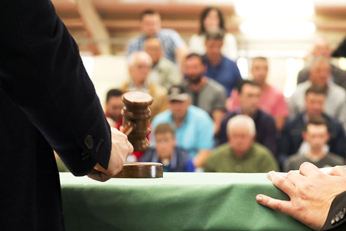 auction houses and pawnbrokers